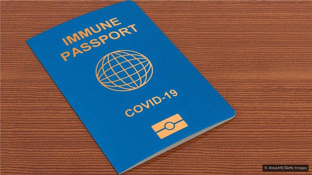 Hộ chiếu miễn dịch có giúp việc đi lại trở nên an toàn? - BBC News Tiếng  Việt