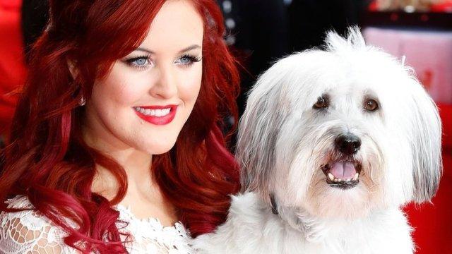 Britain's Got Talent winner Pudsey the dog dies