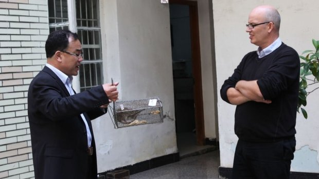 Prof Zhang and Prof Holmes examine a rat in a trap during an infectious disease research trip to China in 2013