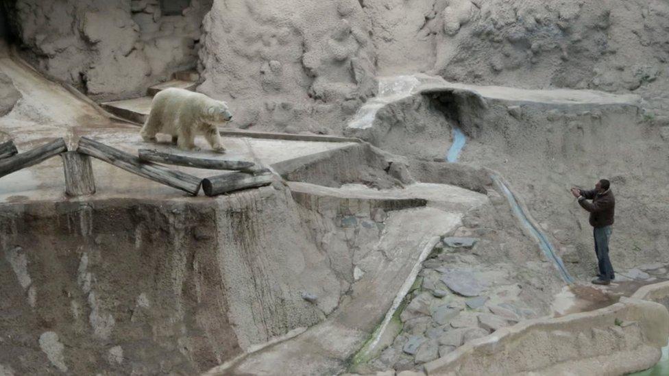 Arturo en el zoo de Mendoza