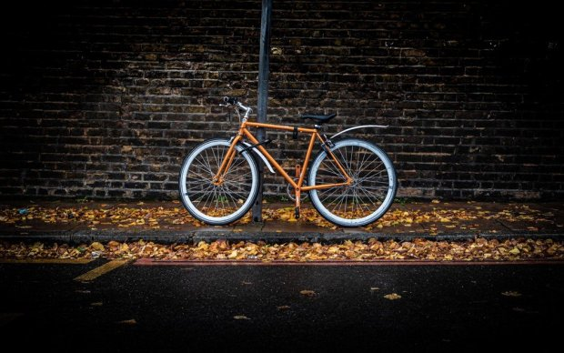 Bicycle and fallen leaves