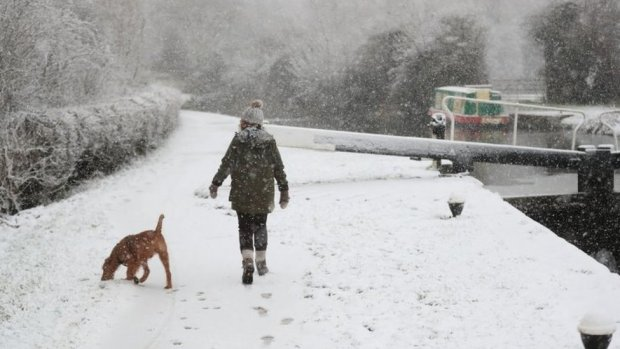 A dog walker braves the snow in Woolsthorpe, Leicestershire