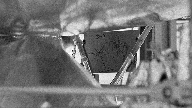 La placa pegada a la sonda