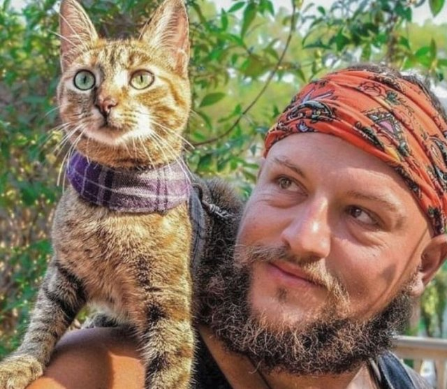 Dean Nicholson made an instant connection with Nala the cat