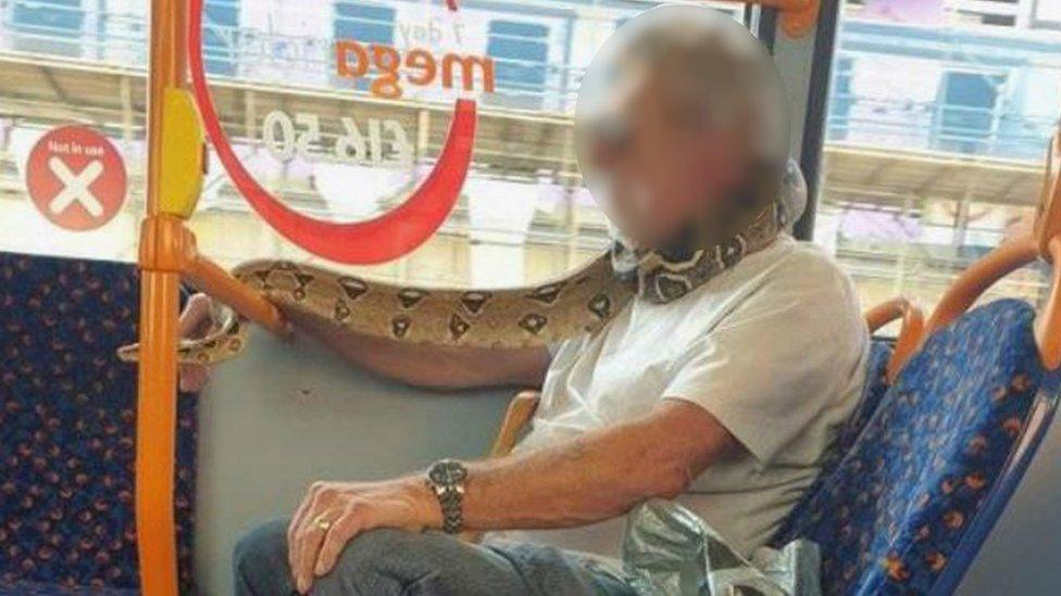 Man using snake as face mask