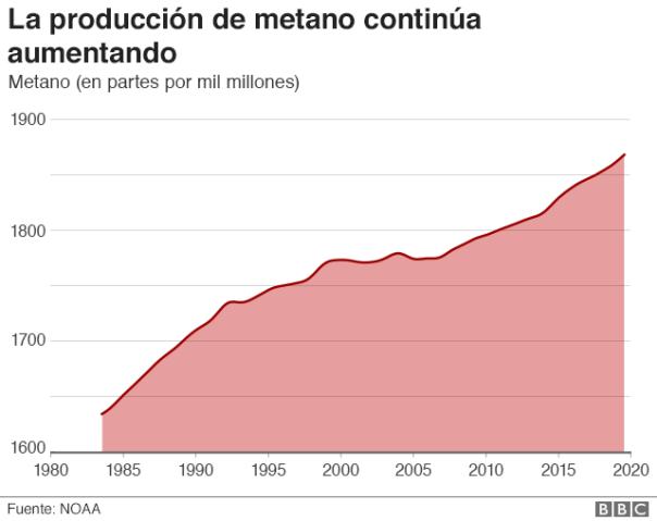 Producción de metano.