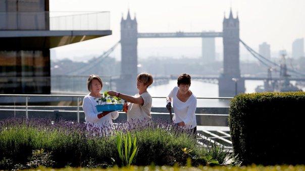 Mujeres en un jardín en Londres