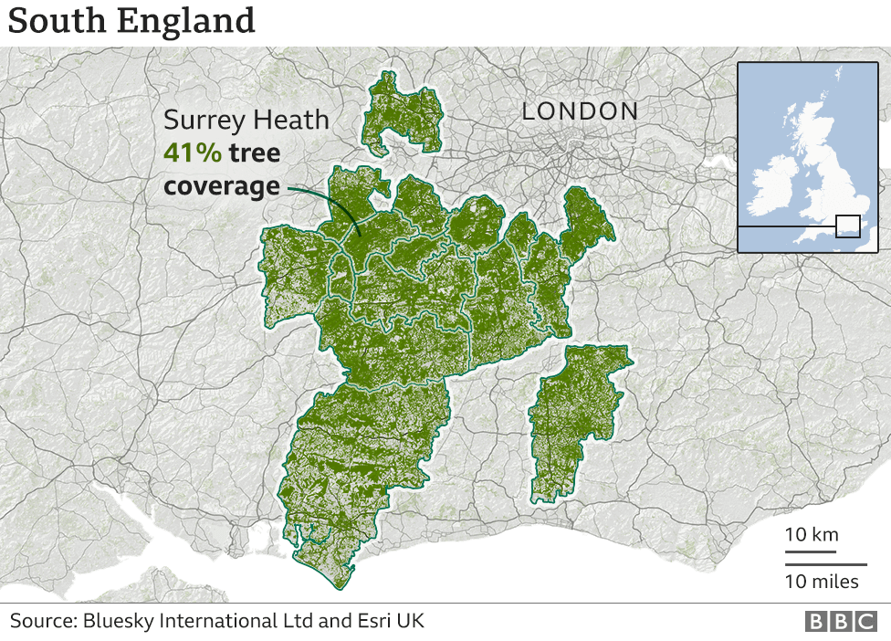 A graphic showing tree cover in the south of England. The highest place is Surrey Heath. Many of the other places in the top 20 surround this area.