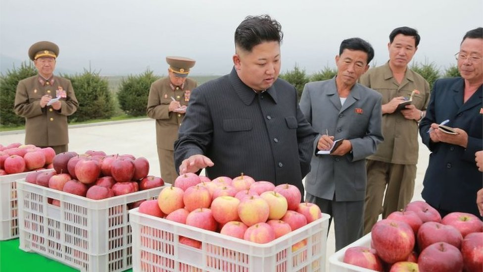 Kim Jong Un visita una granja como parte de sus actividades