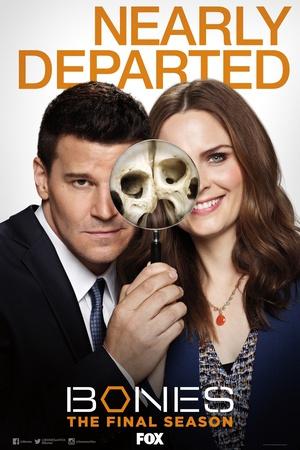 《識骨尋蹤第十二季》線上觀看 - 美國電視劇 - 5k電影網