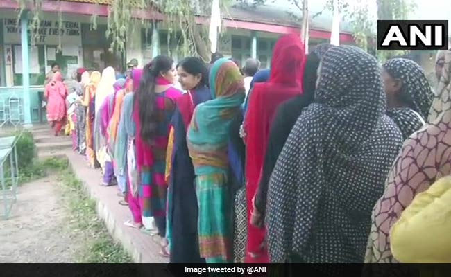 Jammu And Kashmir Civic Body Polls Live Update: Voting Underway Amid Heavy Security