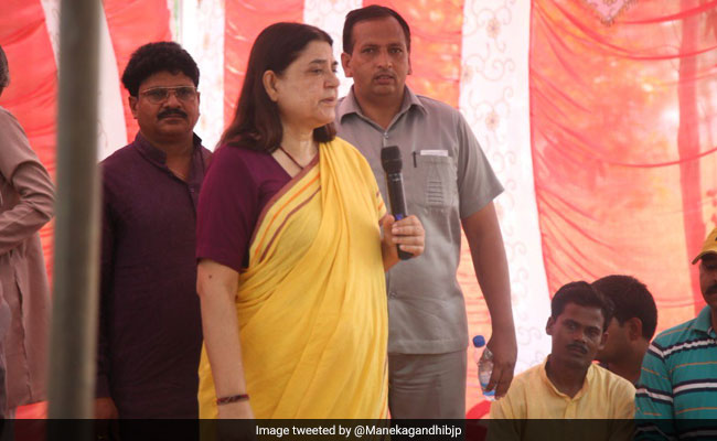 After Video Of Cruelty Against Dog, Maneka Gandhi Shuts Her Animal Center