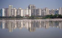 Housing Sales Up 20% Year-On-Year In January-March 2021: Report