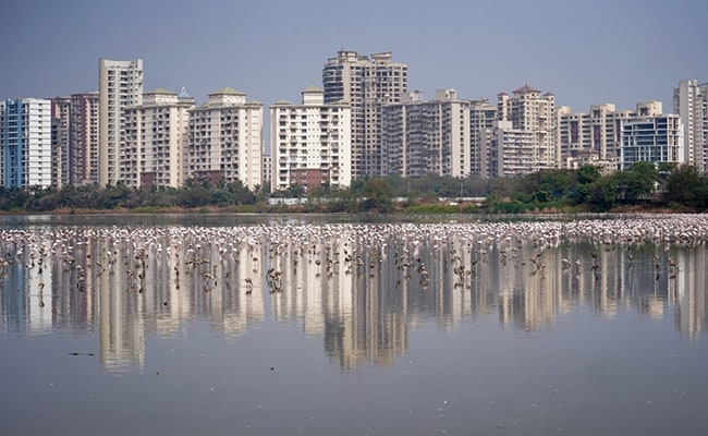 Registration Of Housing Properties Fell 42% To 10,136 Units Last Month In Mumbai