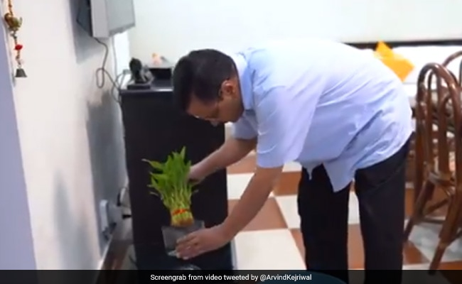 'Have To Defeat Dengue Together': Arvind Kejriwal Shares Video On Twitter