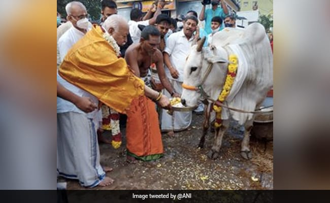 This Pongal, All Political Roads Lead To Tamil Nadu