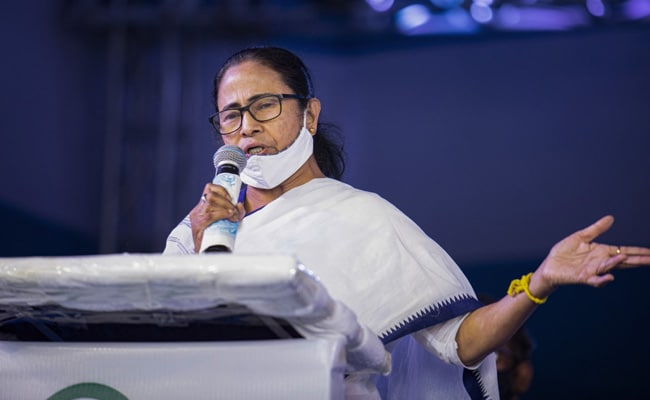 'Snacks Important To Her': Prashant Kishor On Mamata Banerjee's Samosa Love