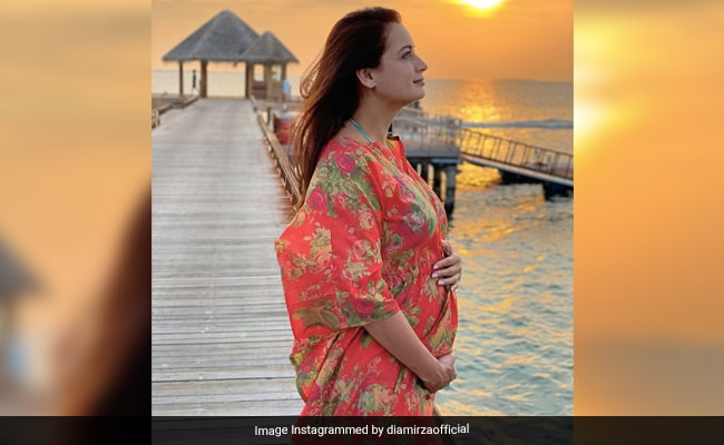 Dia Mirza Responds To An 'Interesting Question': 'This Marriage Is Not A Result Of Pregnancy'