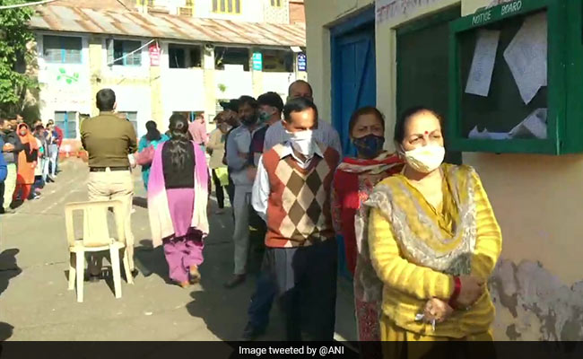 Himachal Pradesh Civic Polls: 40% Polling In Dharamshala, 49% In Palampur Till 2 pm