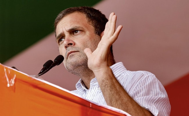 'मगरमच्छ हैं मासूम': राहुल गांधी ने ट्विटर पर पीएम मोदी पर निशाना साधा