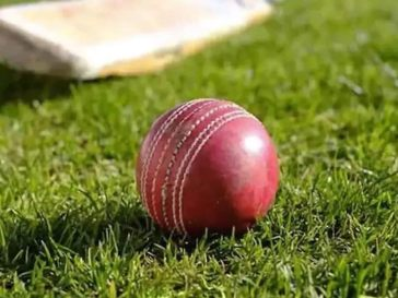 IPL Bookies Employed Cleaner To Do 'Pitch-Siding'