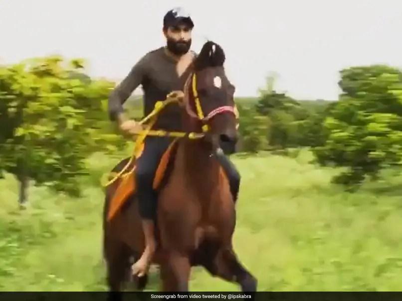 रवींद्र जडेजा को नए वीडियो में अपने घुड़सवारी कौशल दिखाते हुए देखें