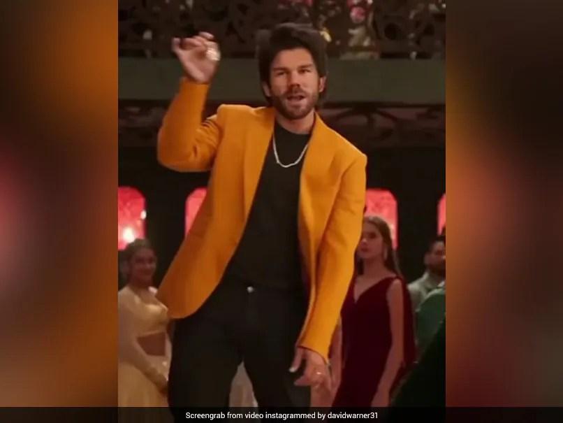 Watch: Fans Love David Warners Allu Arjun Avatar, Wife Candice Has A Question