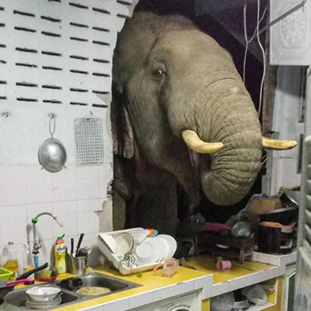 हाथी कमरे में: थाई परिवार विशाल आगंतुक को दोहराया