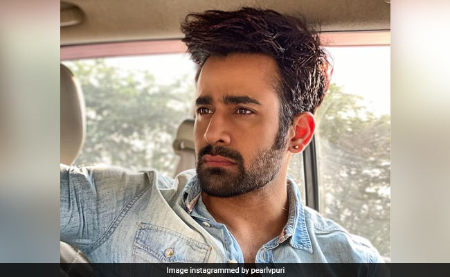 Naagin Actor Pearl Puri Arrested For Allegedly Raping Minor: Report