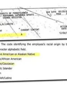Warren changed her listed ethnicity to native american in december nearly three years after also not  factor elizabeth   rise law the rh bostonglobe
