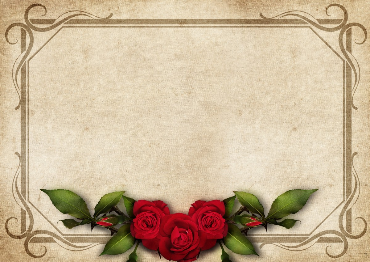 Are Love Red Roses Say