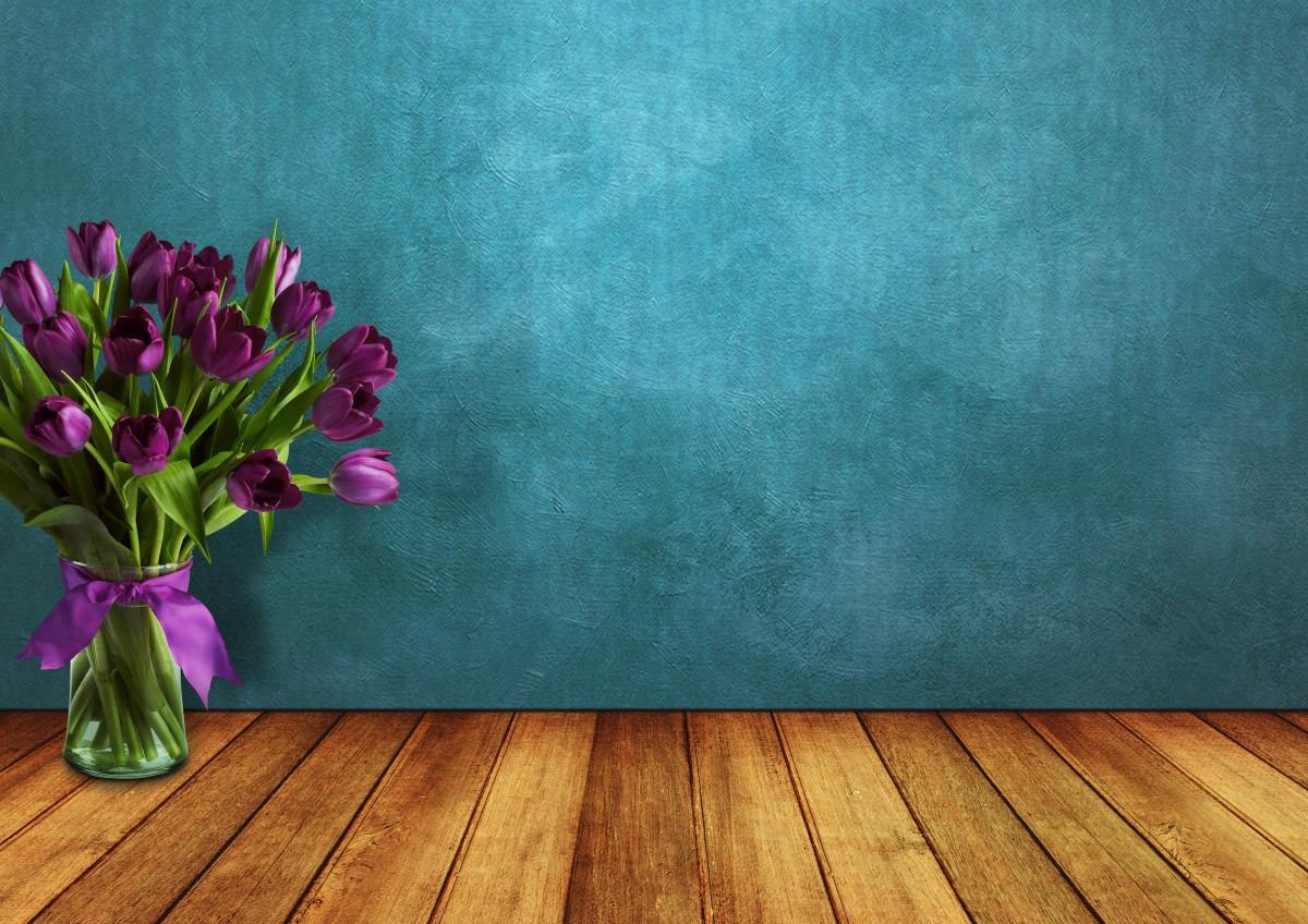 Free Images  tulips room wood vase wall ribbon