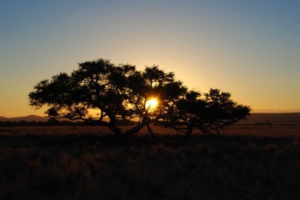 Free Landscape Nature Horizon Sun Sunrise