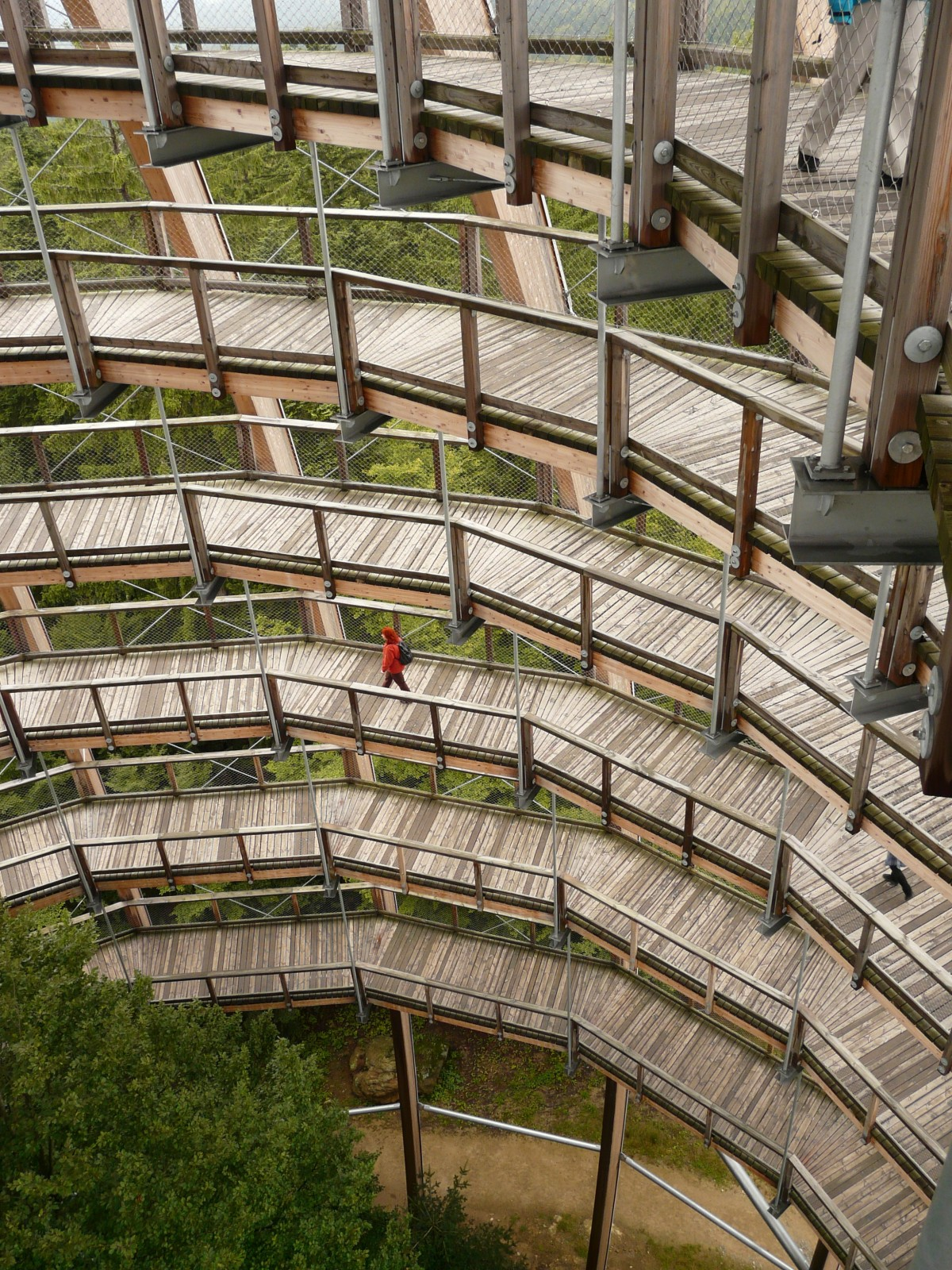 Free Images  forest boardwalk wood spiral roof wall