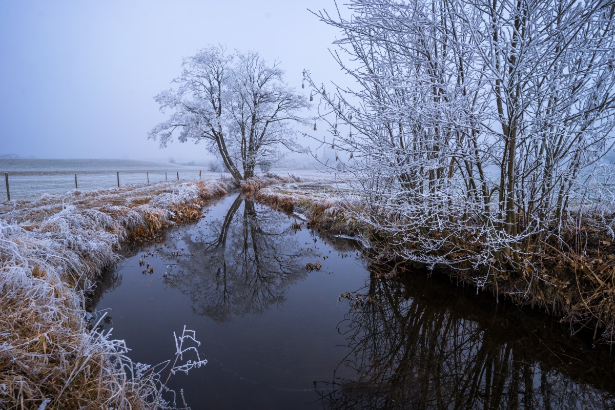 Free Images Landscape Water Nature Branch Snow