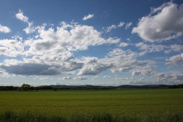 Free Landscape Nature Grass Horizon Cloud