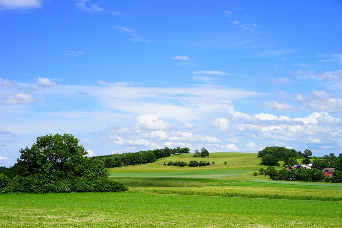 Golf Wallpaper Hd รูปภาพ ภูมิประเทศ ต้นไม้ ขอบฟ้า เมฆ โครงสร้าง ท้อง