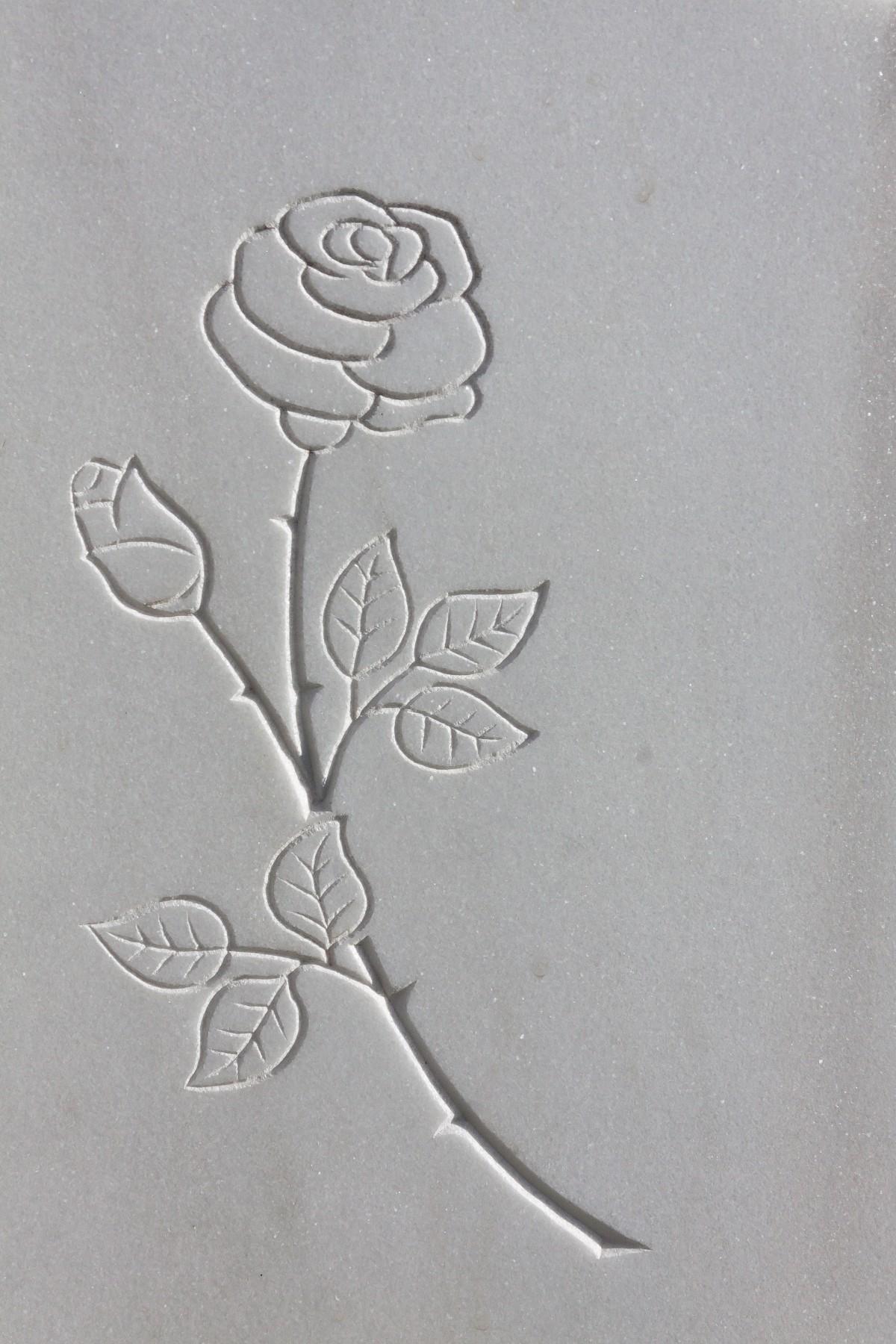 Gratis Afbeeldingen  roos materiaal cirkel schetsen