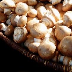 Kitchen Basket White Backsplash Free Images : Dish, Food, Produce, Healthy, Eat, Fungus ...
