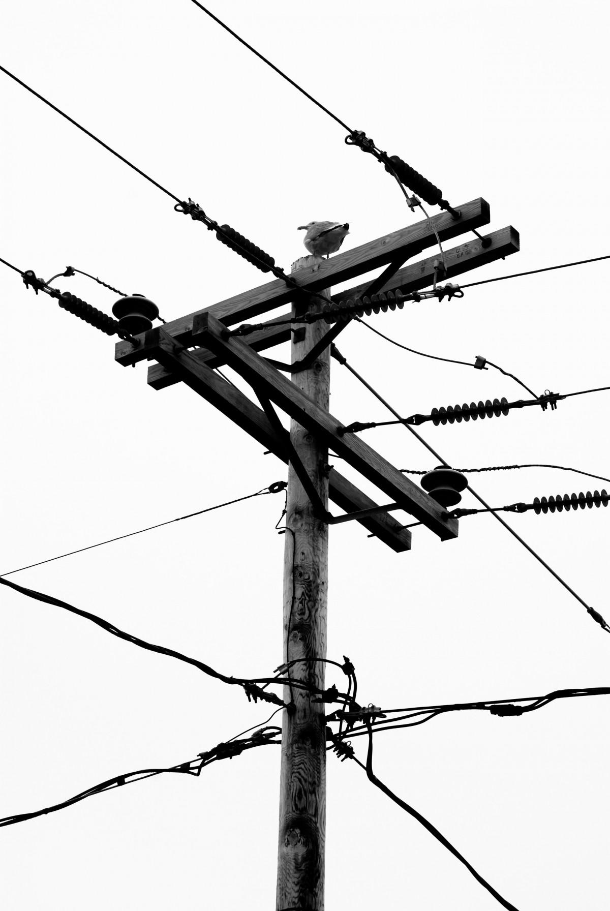 Gratis billeder : afdeling, teknologi, antenne, linje