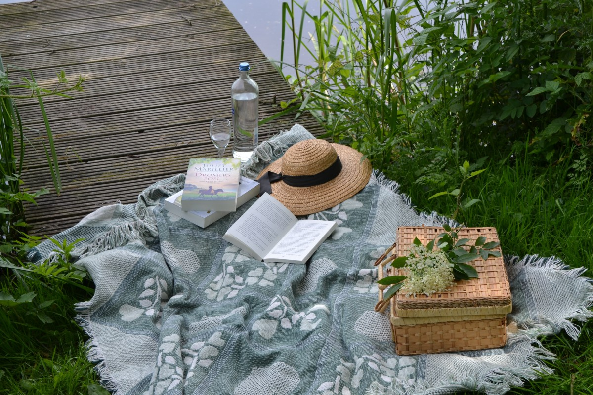 Free Images Table Grass Book Read Lawn Reading