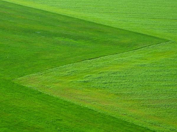 free landscape nature