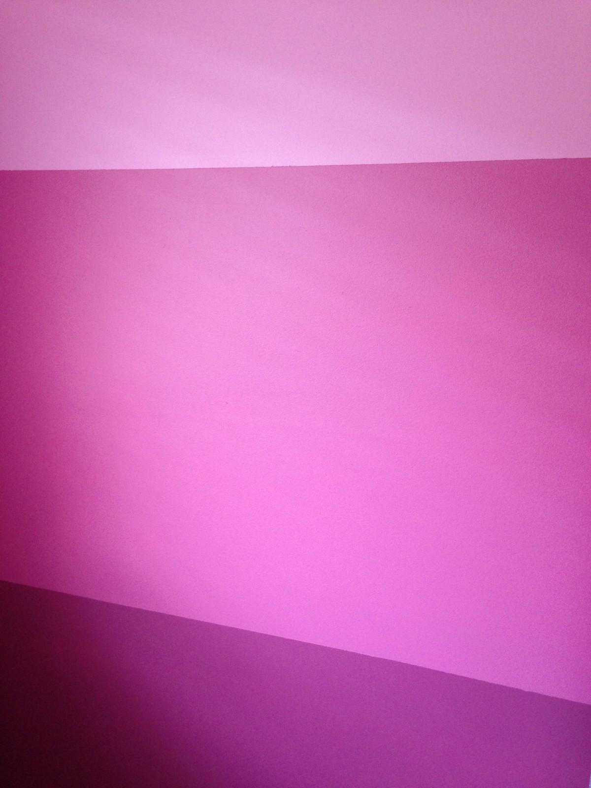 Gambar  ungu daun bunga pedalaman plafon garis warna
