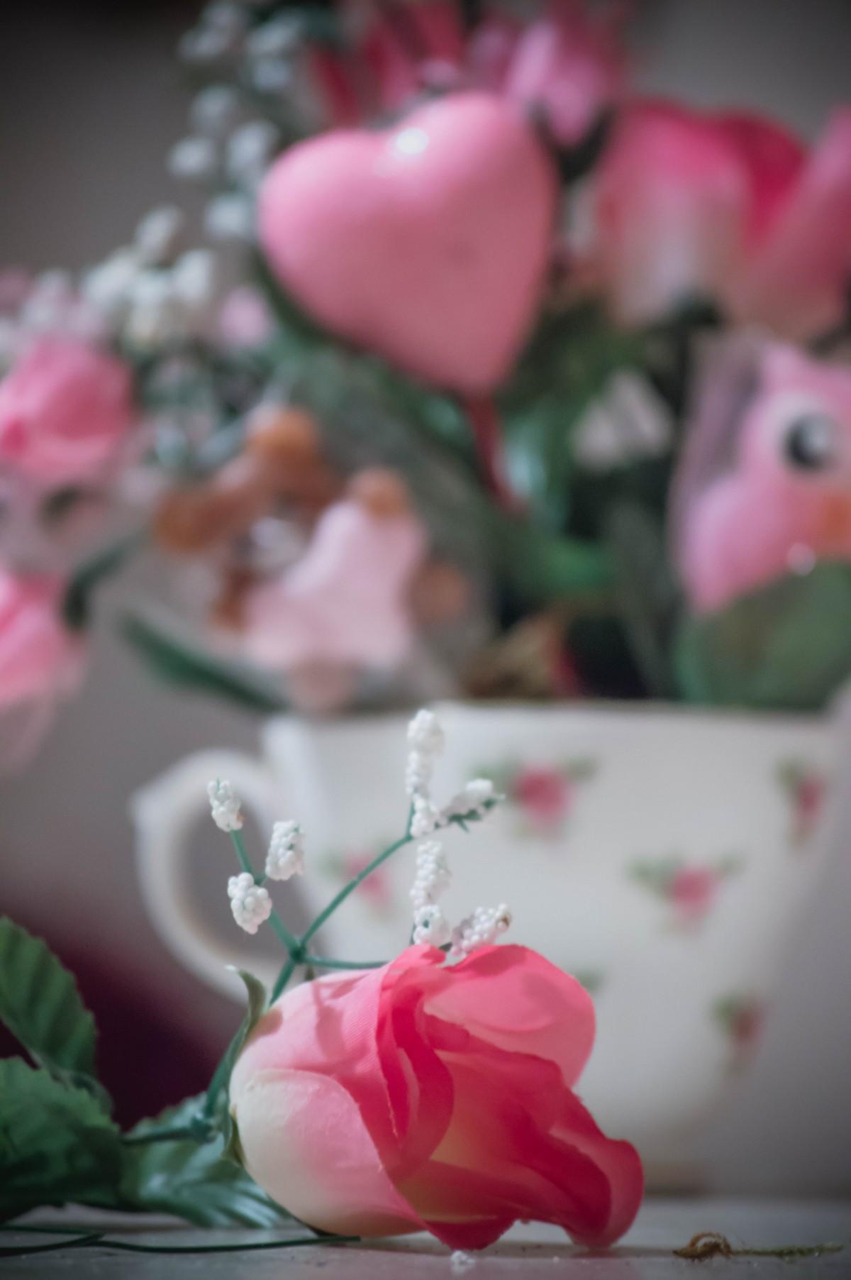 Free Images Flower Petal Love Heart Rose Food Red