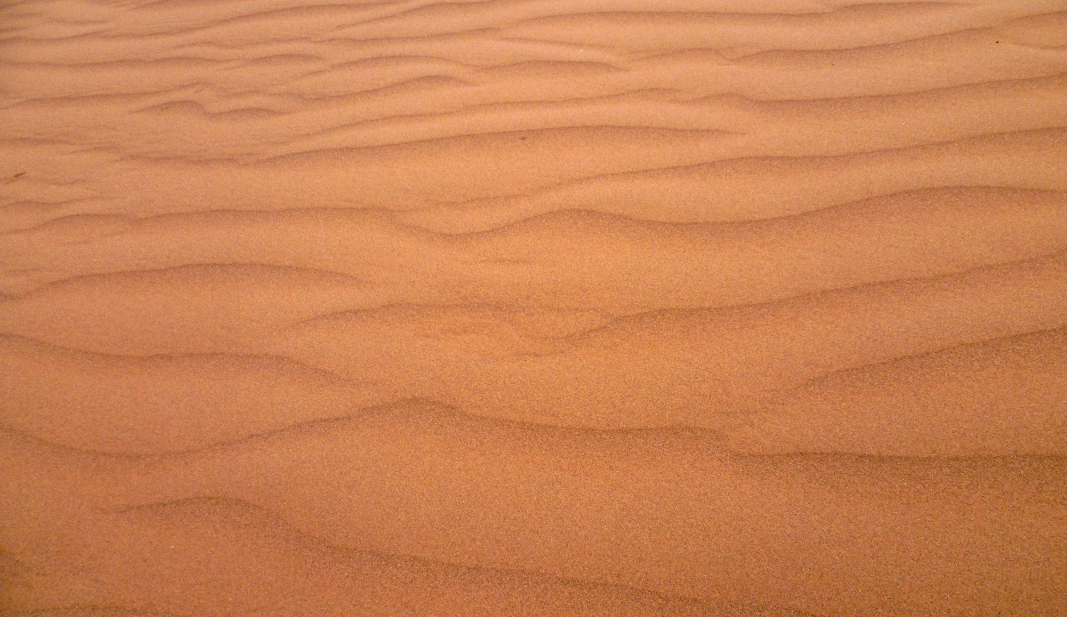 Free Images  nature sand abstract wood desert dune