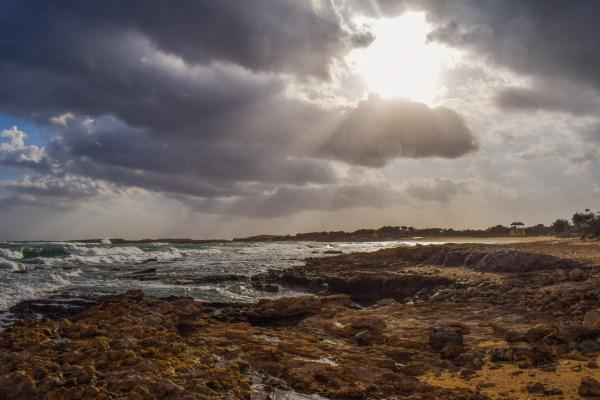 free beach sea coast