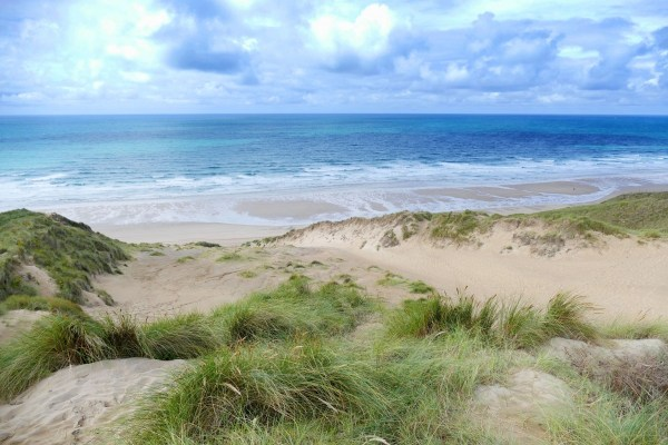 free beach landscape
