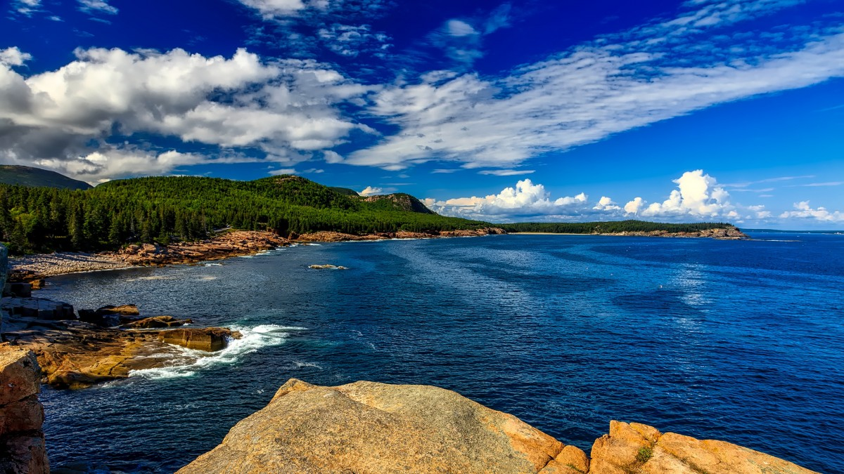Gambar  pemandangan alam hutan lautan horison gunung