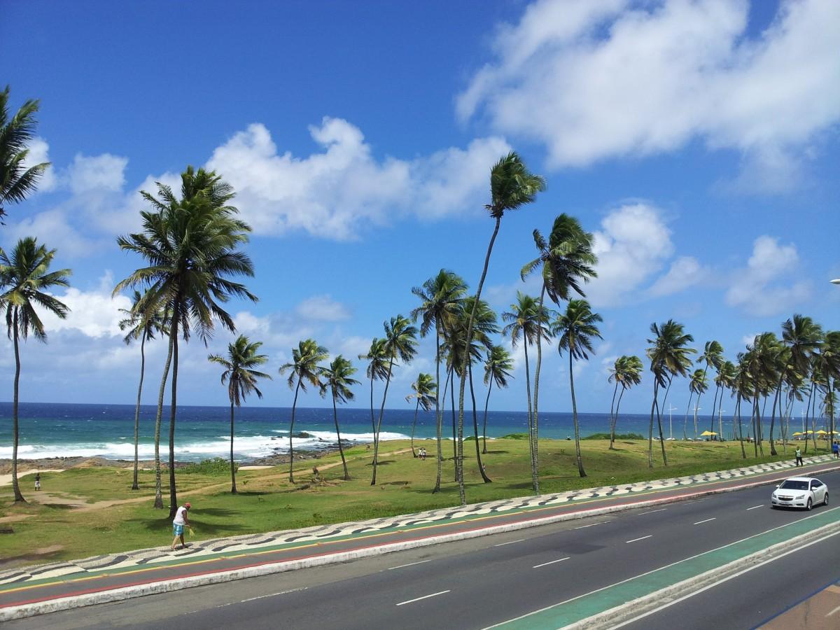 Free Images  beach sea coast tree ocean horizon sky