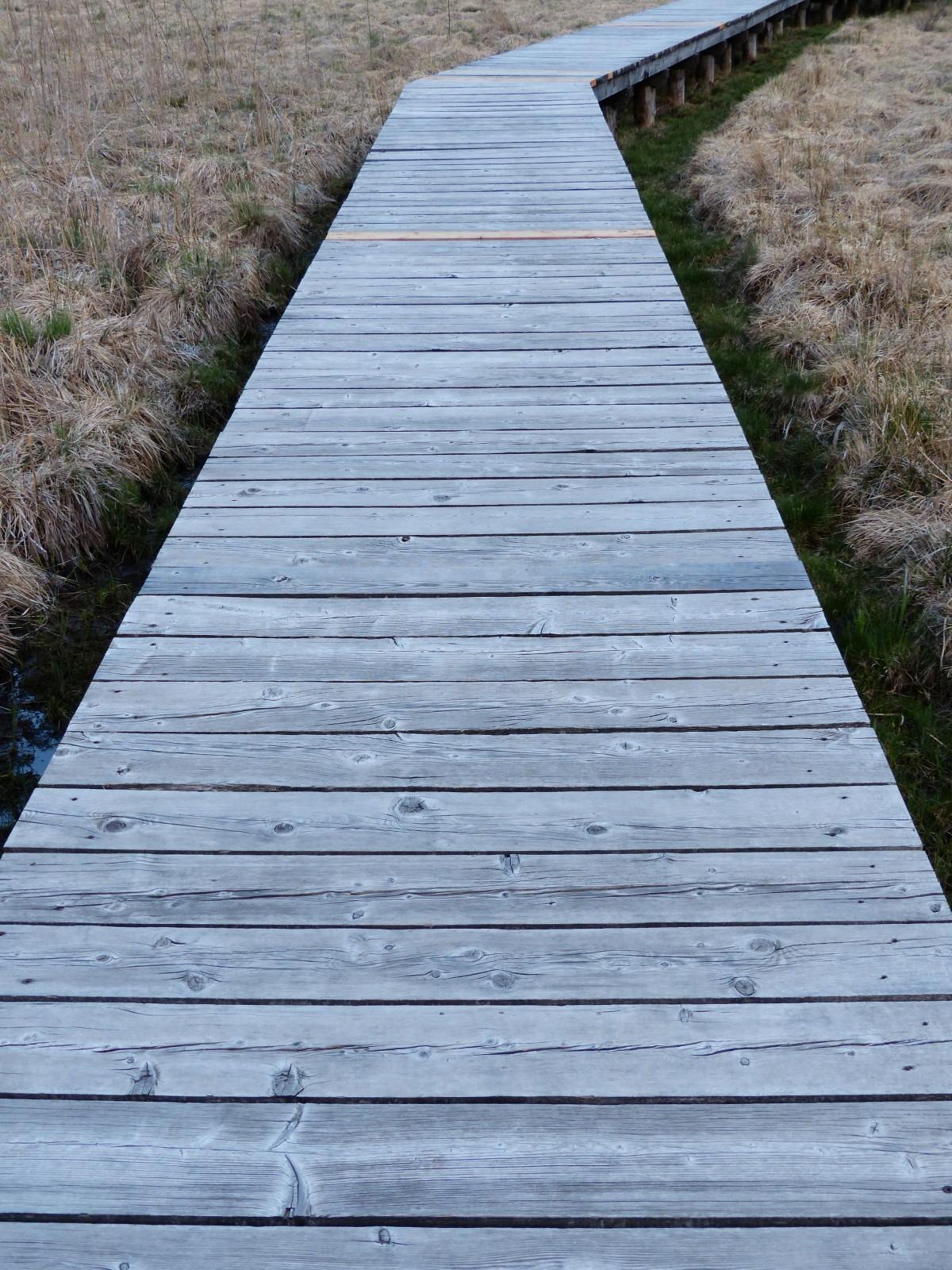 Free Images  swamp boardwalk wood sidewalk roof